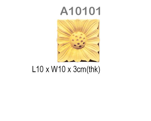 A10101
